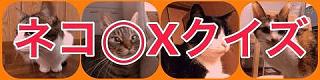 猫 マルバツクイズ